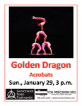 Golden Dragon Acrobats by Center for Performing Arts