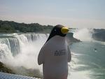 Pierre at Niagara Falls