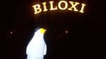 Pierre in Biloxi