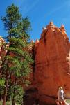 Pierre at Bryce Canyon