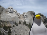 Pierre at Mount Rushmore by Pam Taylor