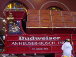 Pierre at Budweiser Brewery by Lindsay Gladstone