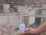 Pierre at Hoover Dam