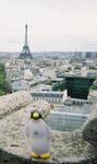 Pierre in Paris