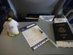 Pierre on a Plane